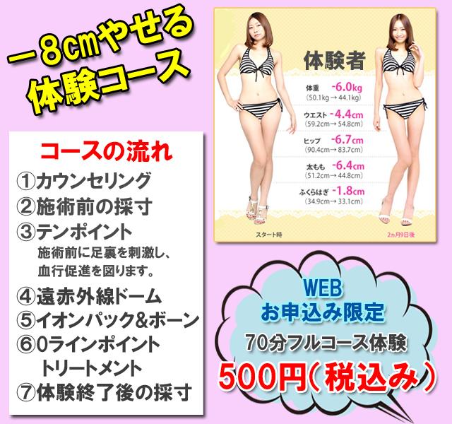 エルセーヌ-8キロ痩せる体験コース